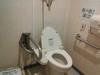 1階身障者用トイレ