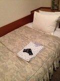 ベッド回り