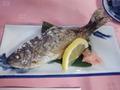 川魚も新鮮