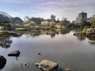 水前寺公園(水前寺成趣園)