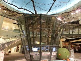 写真クチコミ:鳥取二十世紀梨記念館なしっこ館