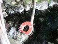露天風呂の浮き輪