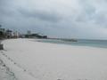 近くの砂浜を散歩しました。