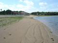 渡具知ビーチに行きました。