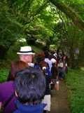 九頭竜神社の大祭