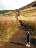 芦ノ湖キャンプ村へのアクセス