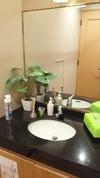 2Fトイレの洗面台