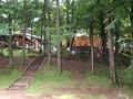 森の中のメリーゴーランド