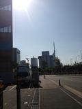 夜は福岡タワーが見れますね!