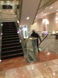 ホテル地下への階段です。