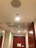 ホテル天井です。