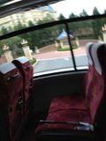 バス シート写真です。