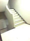 8F 階段写真です。
