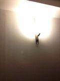 廊下 ライト おしゃれです。