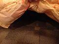 ベッドの下がかなりの収納スペースになっていますよ!