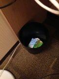 ホテル ゴミ箱 写真です。