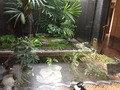 温泉 庭園 池です! おしゃれすぎです!!