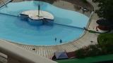 プール全景です