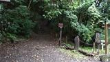 パワースポット的な林道