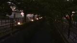 夕闇のお散歩