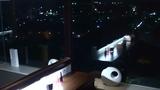 おトイレからの眺め