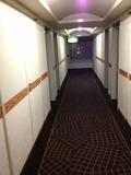 6F 廊下写真です。