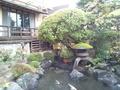 写真クチコミ:庭