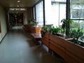 本館から南館への廊下