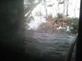 「湧泉」の「深山の湯」