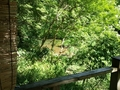 「夢殿」露天風呂からの眺め