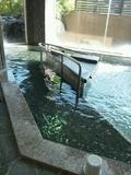 「曳山の湯」歩行湯