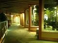 夜の木涌館の廊下