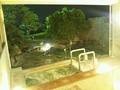 夜の「左の湯」露天風呂