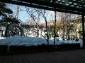 食事処「名月庵」からの眺め
