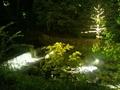 清涼館セミダブルからの夜の眺め
