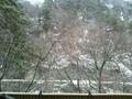 「申の湯」露天風呂からの眺め