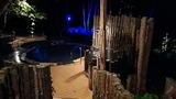 「白樺の湯」露天風呂