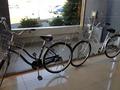 自転車のレンタルしておりました。