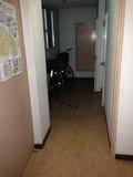 一階の廊下写真です。