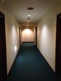 ホテル廊下になります。
