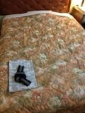 ベッド 写真 です。