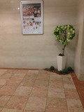 ロビー 観葉植物です。