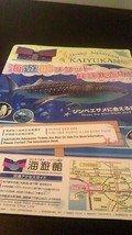 海遊館入館券