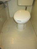 トイレ周りの床はきれいでした。