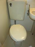 トイレのふたも側面もきれいでした。