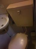 トイレのふた、上部もきれいでした。