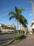 この道を曲がるとホテルのある通りがあります。