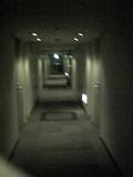 客室階の廊下です