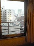 窓からの眺望です