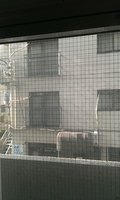窓からは建物しか見えませんでした